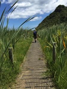 Hiking on the West Coast, NZ